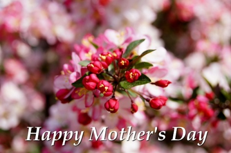 Mother's Day Greeting Card 1