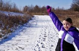 winter path 3