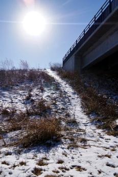 winter path 4