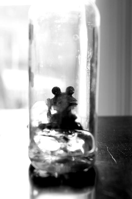 plastic frog offshoots12.com