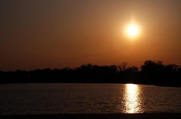 lake sun offshoots12.com