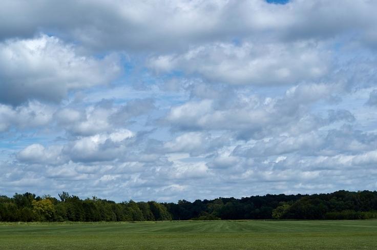 cloudy field http://offshoots12.com