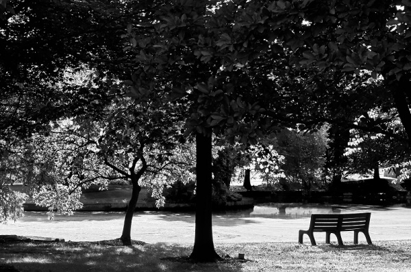 monochrome-park-bench
