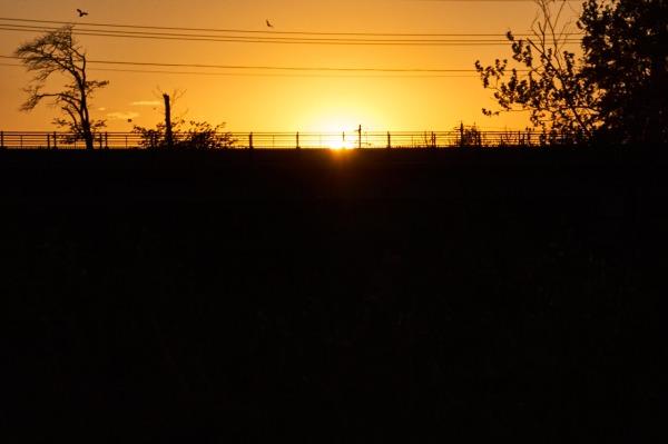 Barat Sunset 07