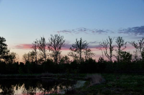 Barat Sunset 13